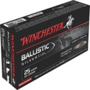 Winchester Repeating Arms WIN Ballistic Silvertip