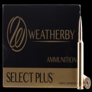 Weatherby Nosler Partition