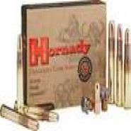 Hornady In DGX Count