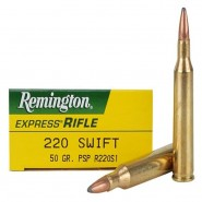 Remington Express Pointed SP