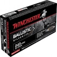 Winchester Ballistic Silvertip Rapid Controlled Expansion Polymer Tip