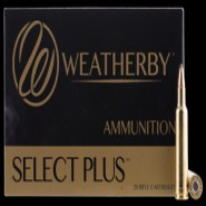Weatherby Select Plus Nosler Partition NP
