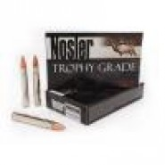 Nosler Trophy Grade Partition Spitzer And Cartridge Brass