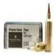 Federal Cartridge Winchester Short SP
