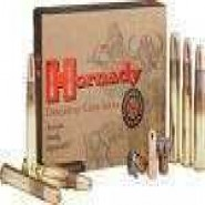 Hornady DGS Dangerous Game Solid